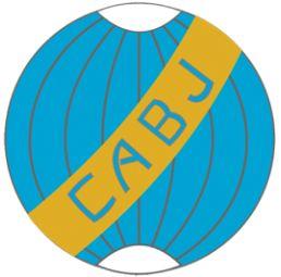 5c34a2f327 ESCUDOS Distintivo utilizado entre 1911 e 1914 Ao longo da história o Boca  Juniors teve ...
