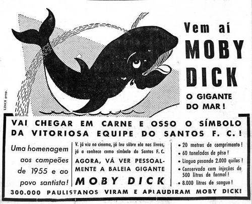 Moby Dick a Baleia Santista