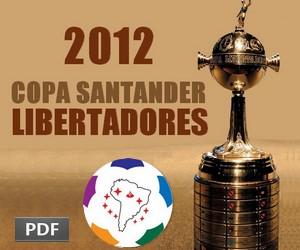 A história da Taça Libertadores de 2012